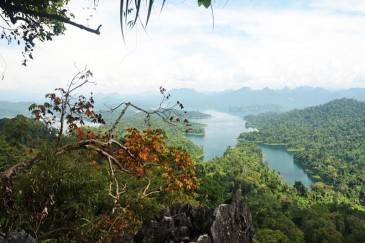 Khao Sok Trekking Tour