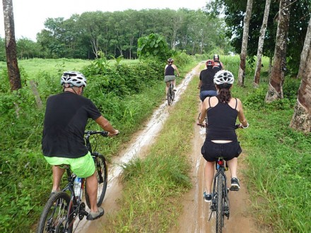 Phuket Biking Tour Northern Sothern Trails Full Day