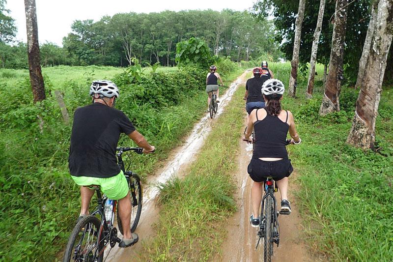 Phuket Biking Tour Northern Sothern Trails Full Day